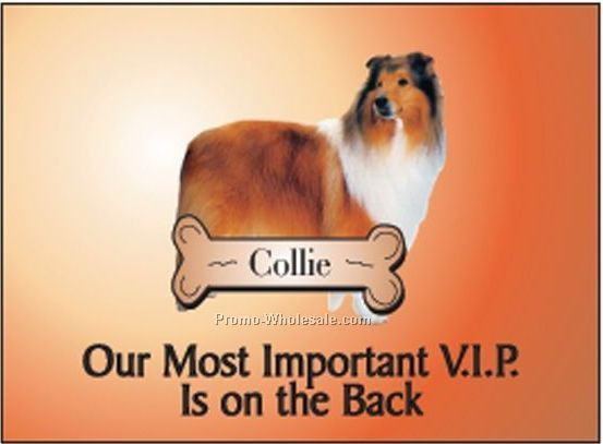 collie rectangle photo hand