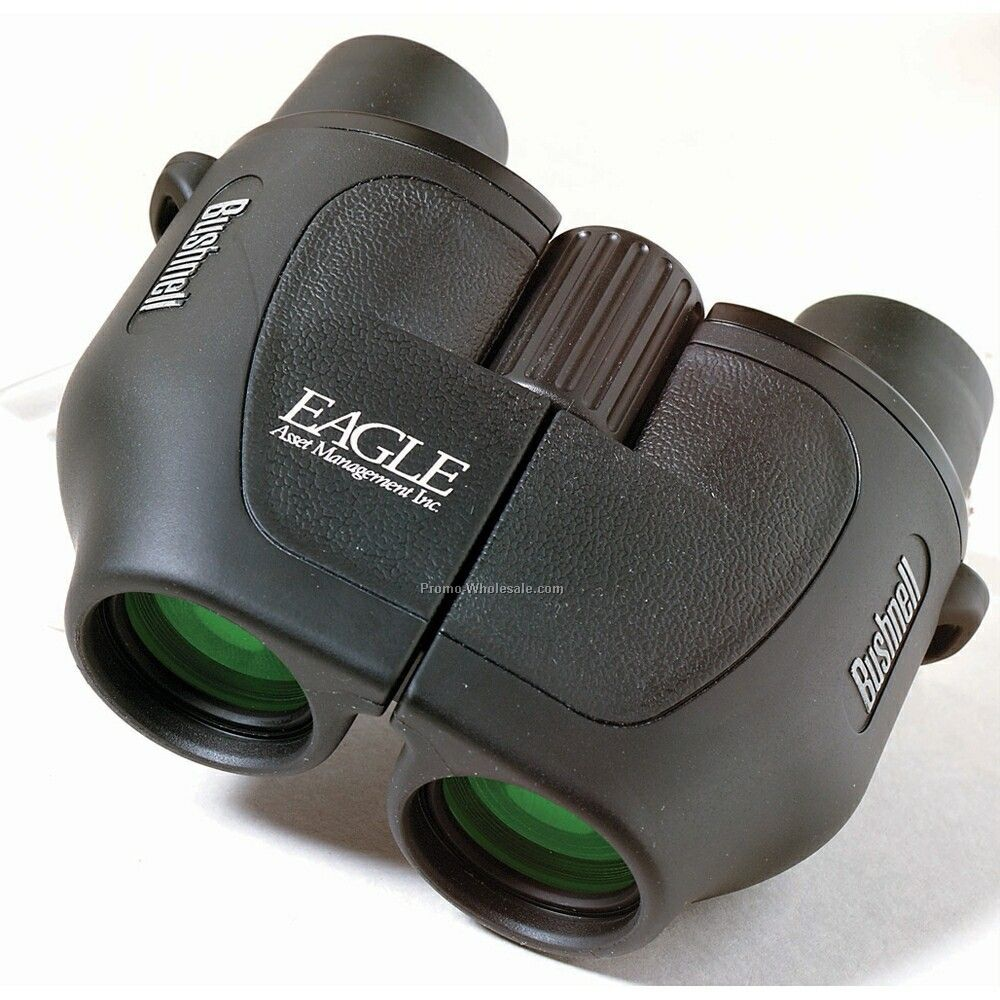 Bushnell Powerview 12x25 Compact Binoculars are some of the best