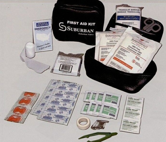 Auto First Aid Kit In A Soft Pack Case