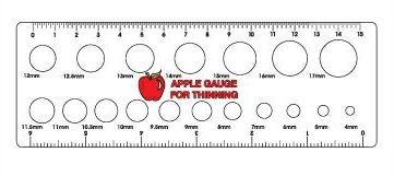 Apple-Thinning-Gauge_ ...