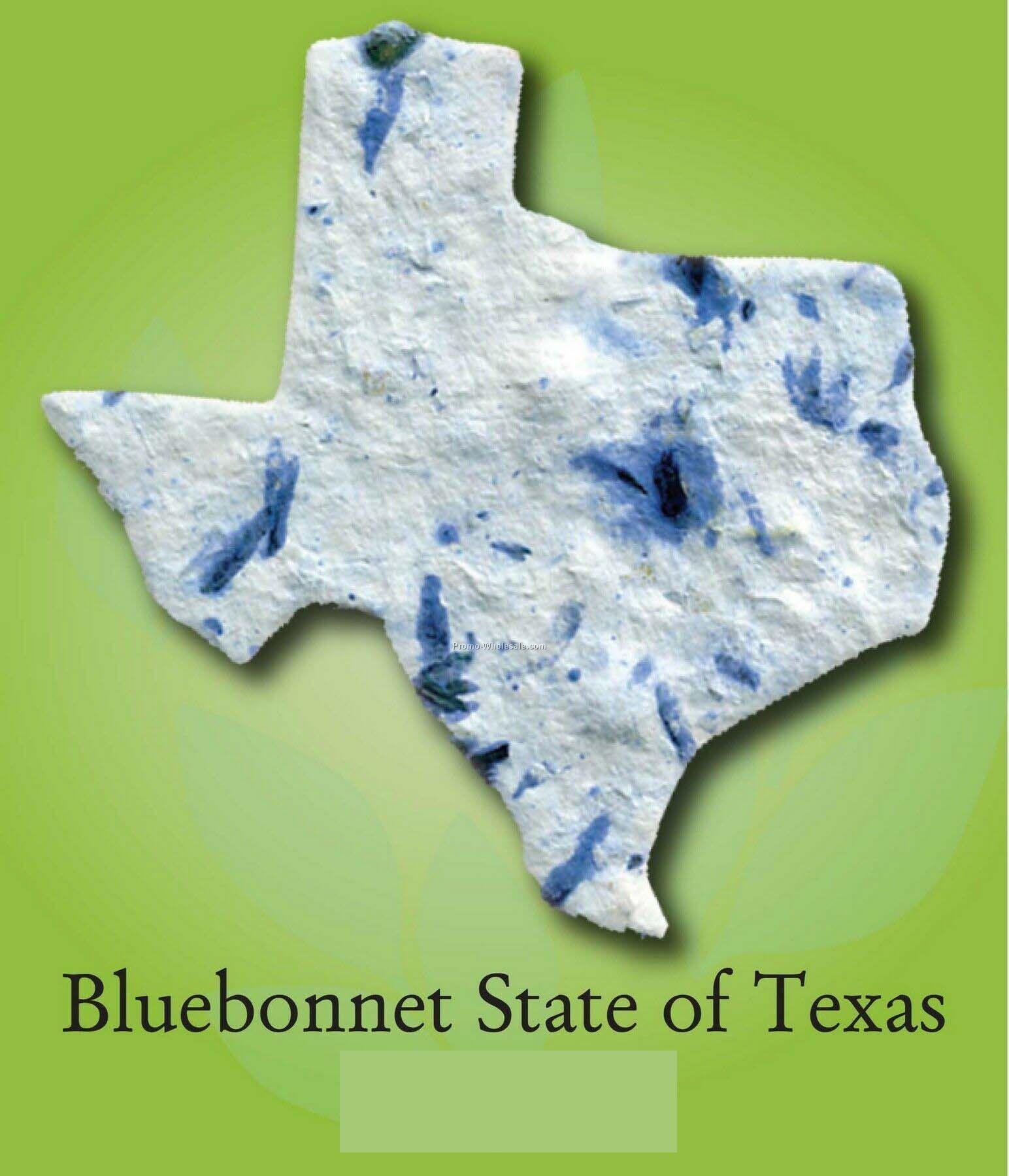 Texas Bluebonnet State Flower