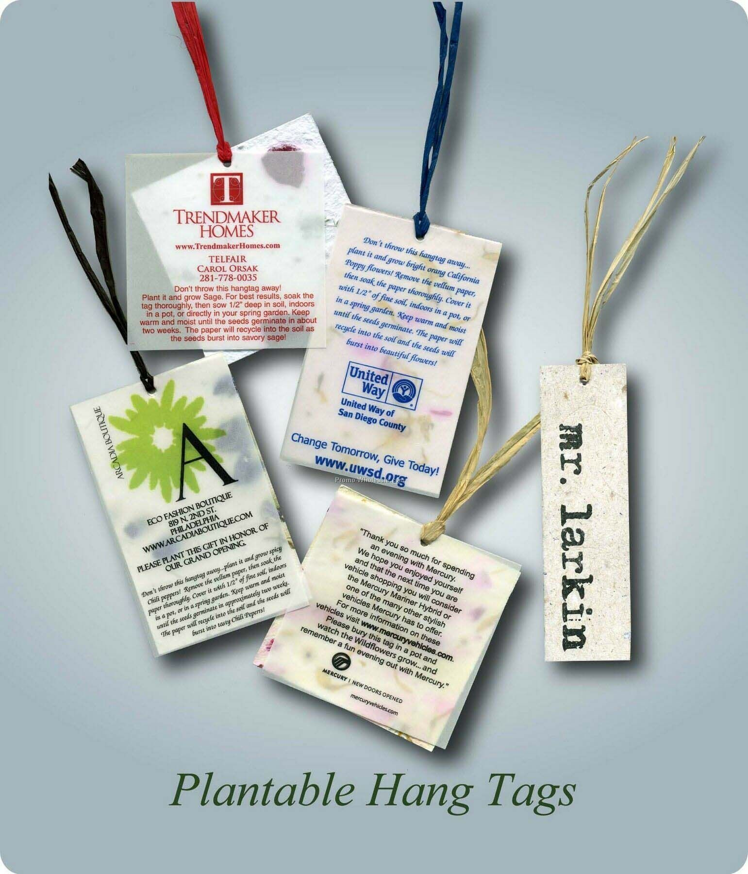 "3""x3"" Plantable Seed Hang Tag"