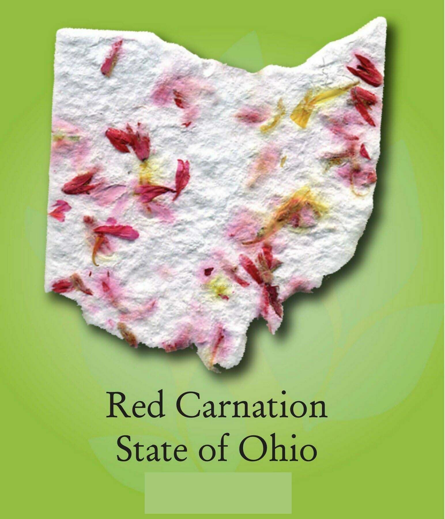 Red Carnation State Of Ohio