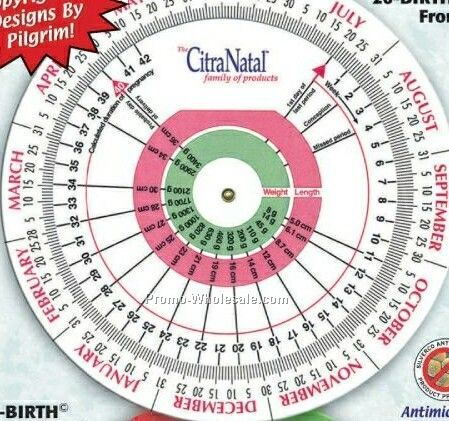 Large Pregnancy And Gestation Calculator Chart