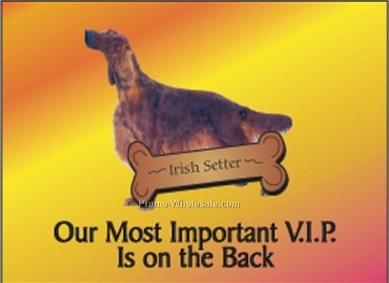 "Irish Setter Rectangle Photo Hand Mirror (2-1/2""x3-1/2"")"