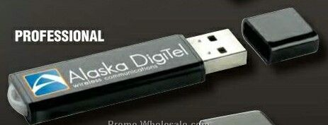 Professional USB 2.0 Flash Drive (256 Mb)