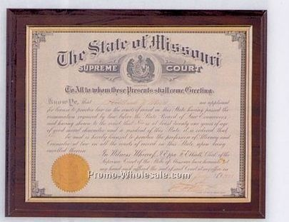 "10-1/2""x13"" Various Finishes & Gold Or Silver Border Certificate Plaque"