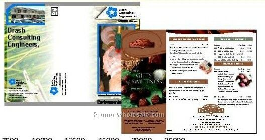 "11""x17"" Brochures Gloss Text (4 Color Front)"