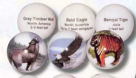 Collectible Art Marbles -north American Wildlife Animarbles