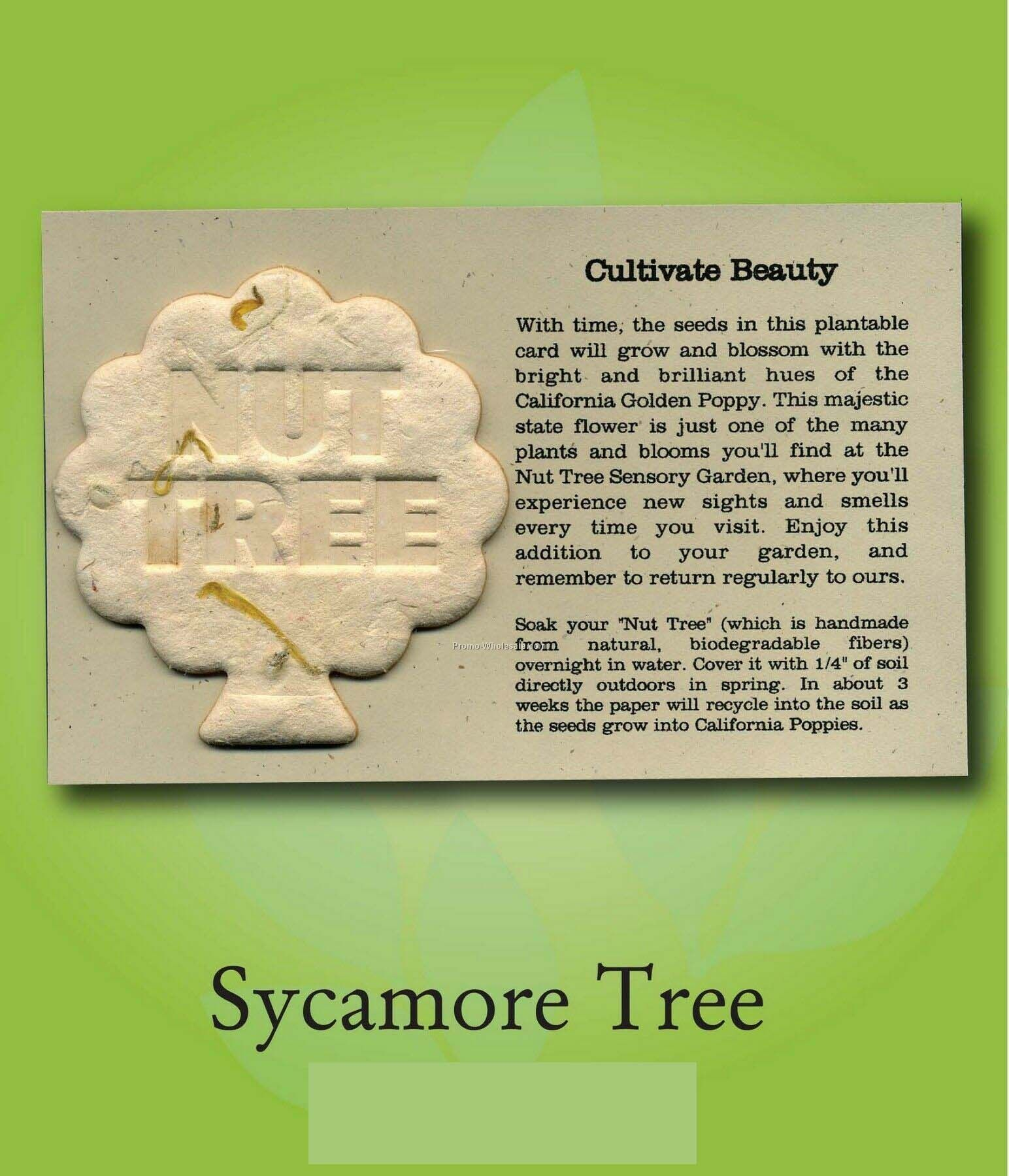 Sycamore Tree Ornament W/ Embedded Seed