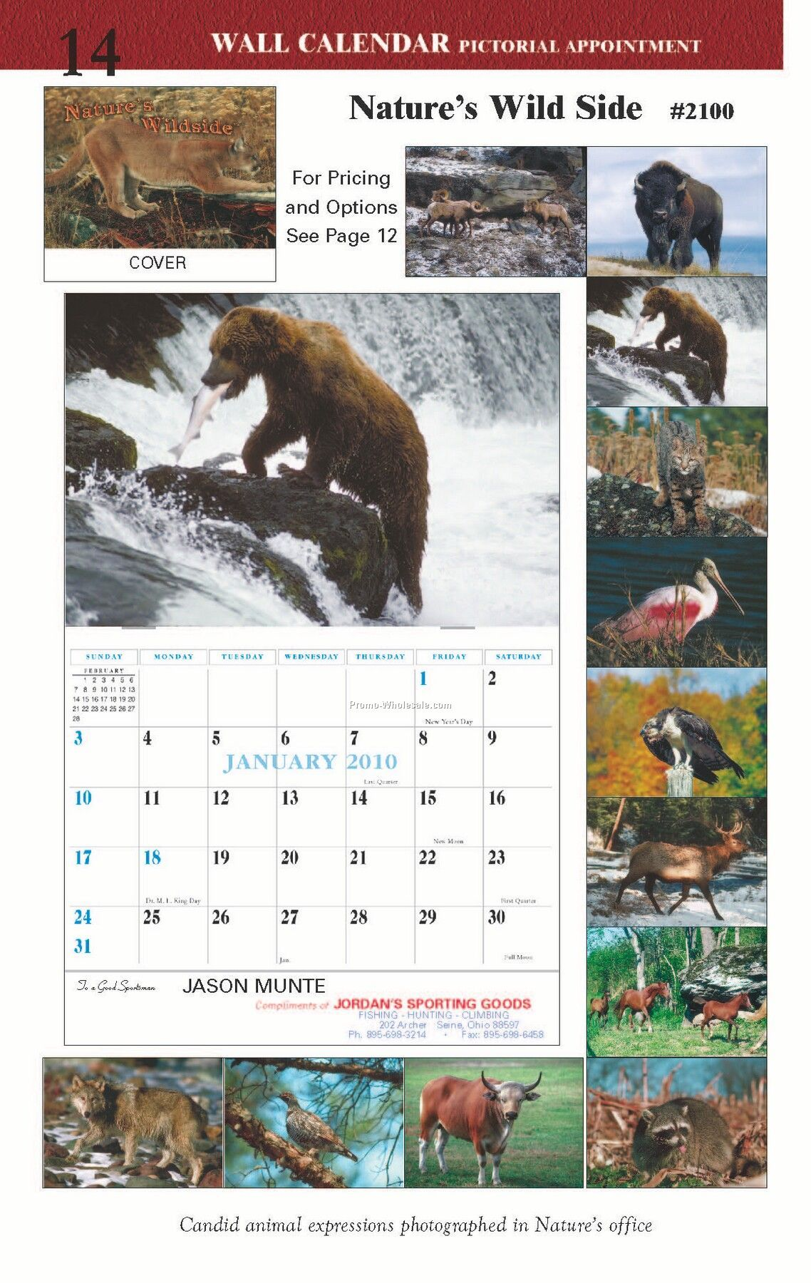 Wall Calendars: Natures Wild Side - Spiral Bound