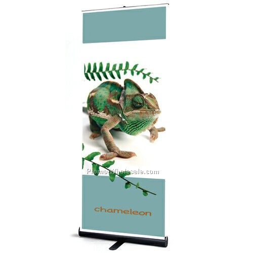 Banner And Stand Set - 2' X 8'