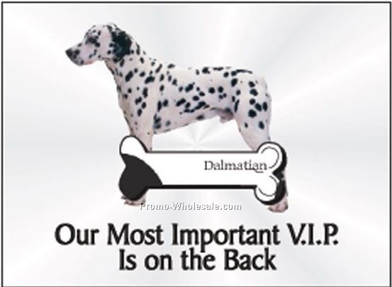 "Dalmatian Rectangle Photo Hand Mirror (2-1/2""x3-1/2"")"