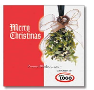 Merry Christmas Holiday Compact Disc In Greeting Card/ 12 Songs