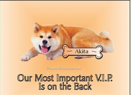 "Akita Dog Photo Hand Mirror W/ Full Back Mirror (3-1/8""x2-1/8"")"