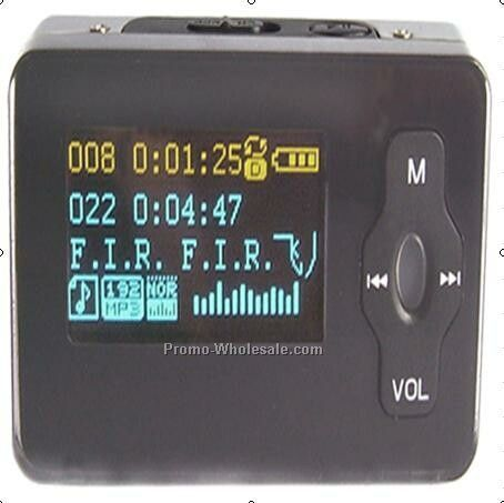 Mp3 W/FM Radio Receiver
