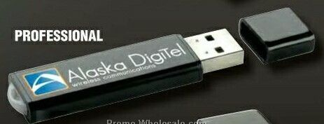 Professional USB 2.0 Flash Drive (1 Gb)