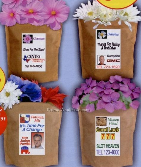 Zinnia Complete Bags That Bloom