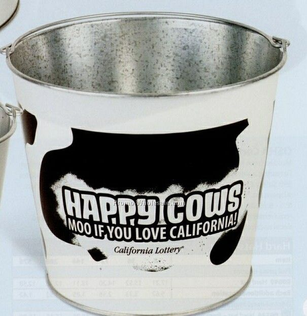 10 Quart Galvanized Metal Pail
