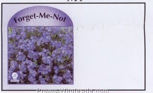 "4""x6-1/2"" Forget-me-not Self Mailer Seed Envelopes (Imprinted)"