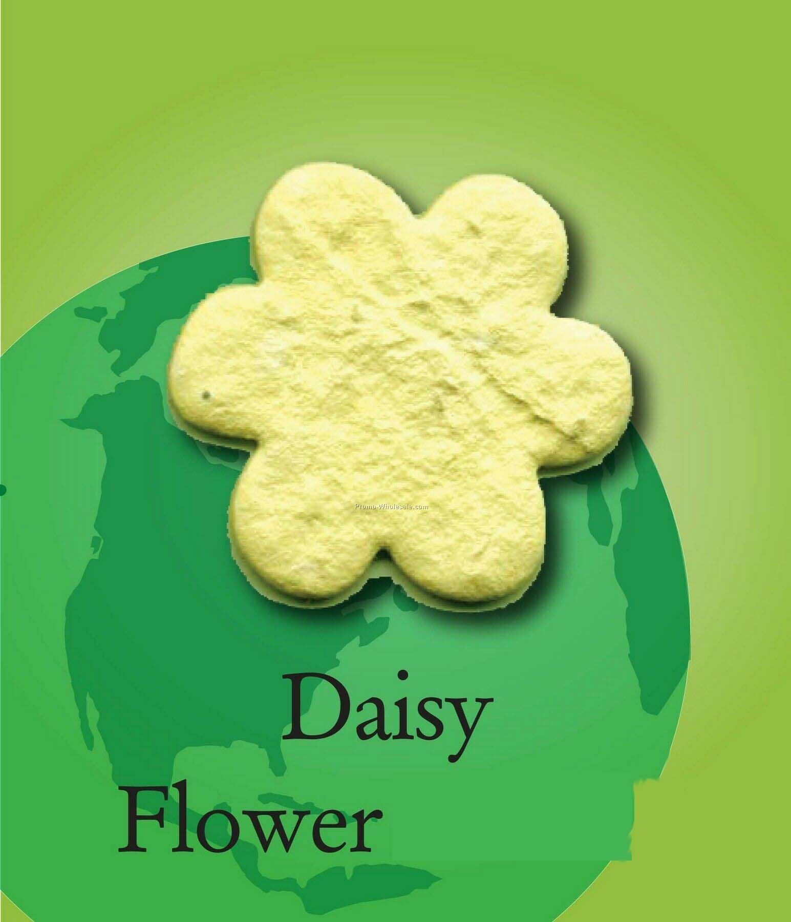 Daisy Flower Handmade Seed Plantable Mini
