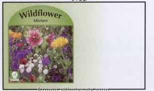 "4""x6-1/2"" Wild Flower Mix Self Mailer Seed Envelopes (Imprinted)"