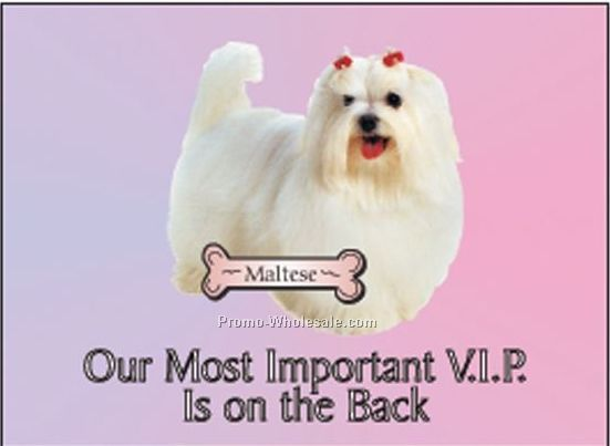 "Maltese Dog Photo Hand Mirror W/ Full Back Mirror (3-1/8""x2-1/8"")"