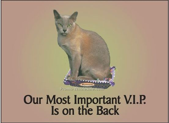 "Burmese Cat Rectangle Photo Hand Mirror (2-1/2""x3-1/2"")"