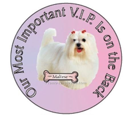 "Maltese Dog Round Hand Mirror W/ Full Mirror Back (2-1/2"")"